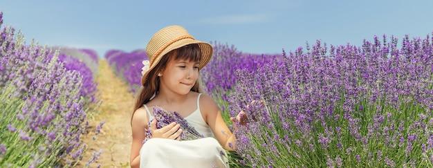 Een kind in een bloeiend gebied van lavendel.