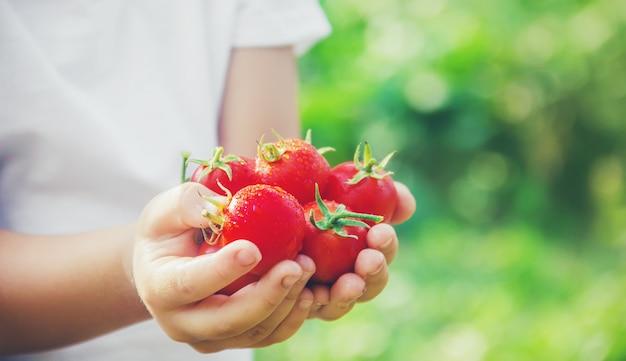 Een kind in een tuin met tomaten.