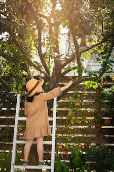 Een kind klom op een ladder op de boom die zijn hand bereikte.
