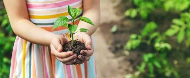 Een kind met zaailingen in zijn handen in de tuin