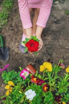 Een kind plant een bloementuin. selectieve aandacht.