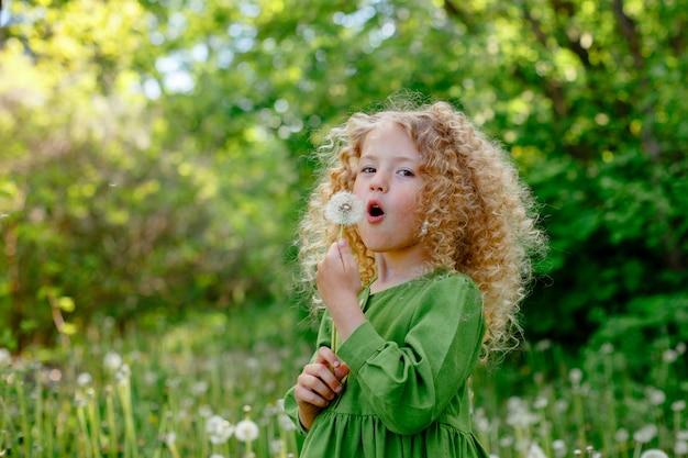 Een klein blond meisje met krullen blaast op paardebloemen in een open plek