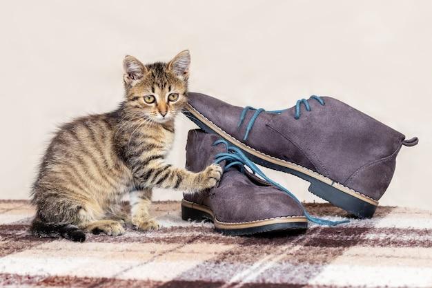 Een klein gestreept katje speelt bij de schoenen