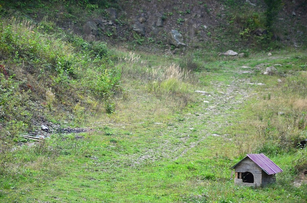 Een klein hondenhok in de open lucht op een grasveld