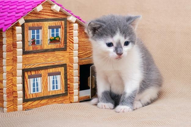 Een klein katje zit bij een speelgoedhuis