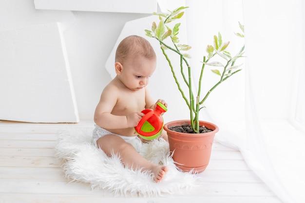 Een klein kind, een jongen van 8 maanden, zit aan het raam met een gieter en een bloem in witte kleren in een licht appartement water te geven, zorgend voor planten door een kind
