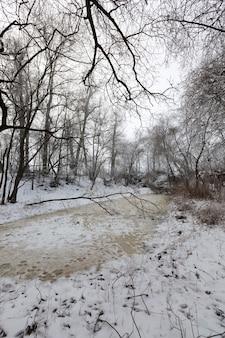 Een klein meer of moeras in het bos in de winter, het meer is bedekt met dik geel ijs van bevroren water, winternatuur en vorst