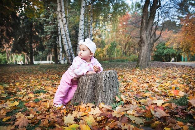 Een klein meisje in een herfstpak, een hoed in het park of in het bos in de herfst