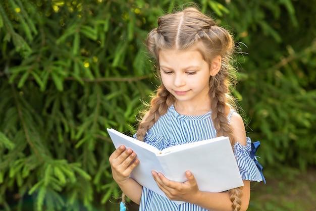 Een klein meisje in een jurk leest een boek in het bos