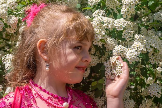 Een klein meisje in een paarse jurk snuift witte bloemen aan een boom.
