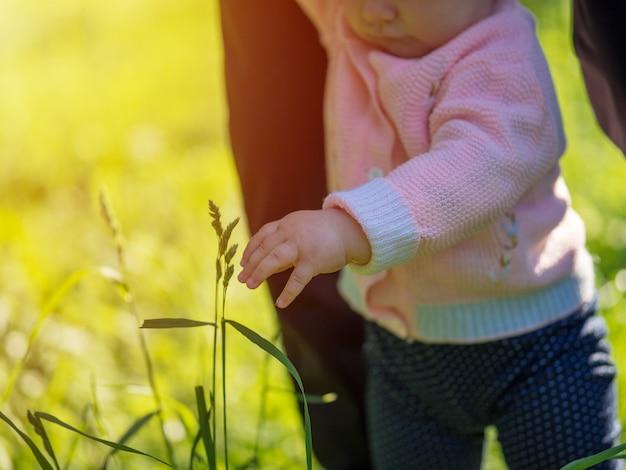 Een klein meisje loopt met papa bij de hand in het park