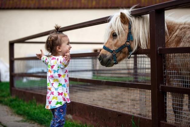 Een klein meisje met een blank uiterlijk geniet van een pony-paard in een stal op een boerderij
