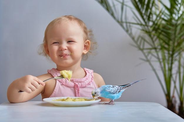Een klein meisje met een blauwe grasparkiet (binnenlandse parkiet) papegaai eet van hetzelfde bord. het concept van vriendschap en de zorg voor huisdieren.