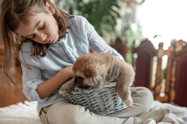Een klein meisje speelt met haar kleine en pluizige puppy