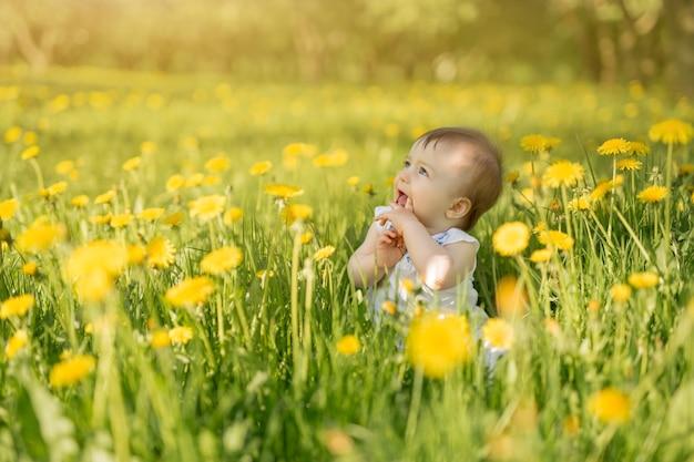 Een klein meisje zit in een veld met gele paardebloemen in de zon en kijkt naar de zijkant. de schattige jongen stak zijn vingers in zijn mond. baby verzorging. vuile handen likken is gevaarlijk voor je gezondheid.
