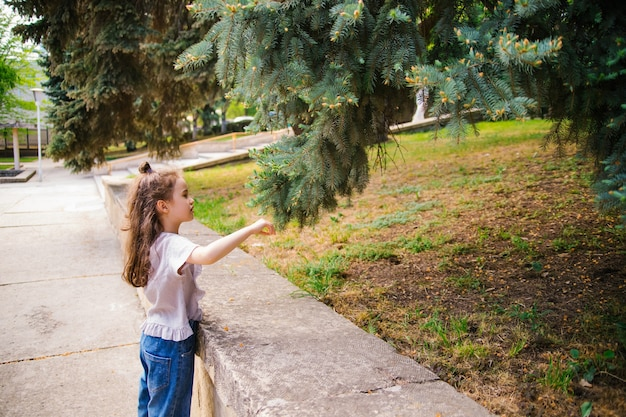 Een klein nieuwsgierig meisje onderzoekt een boomtak in een stadspark. een groene boom groeit in de buurt van de stoep. een wandeling in het park met een gezin.