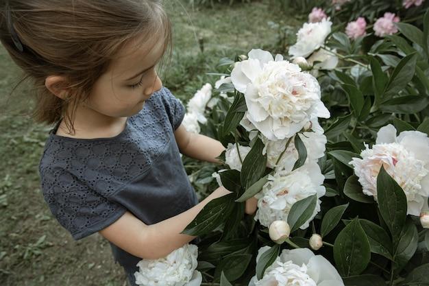 Een klein schattig meisje ruikt een struik met witte pioenrozen die in de tuin bloeien