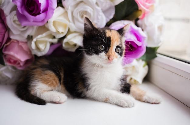 Een klein veelkleurig katje op de achtergrond van kunstbloemen zit op de vensterbank