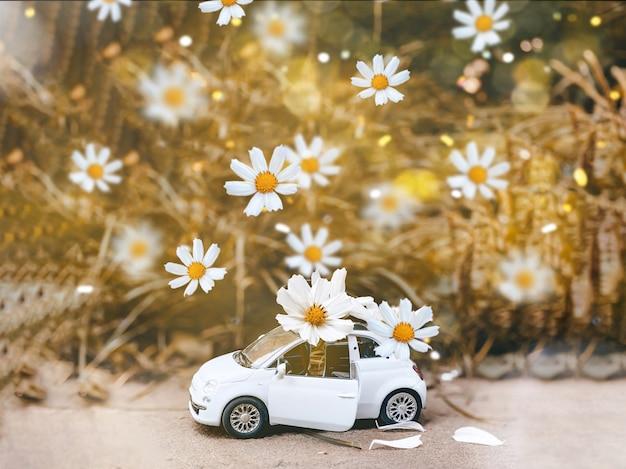 Een kleine blauwe kinderauto staat op een herfstgele achtergrond en er vallen prachtige witte madeliefjes op. herfst en magisch concept..