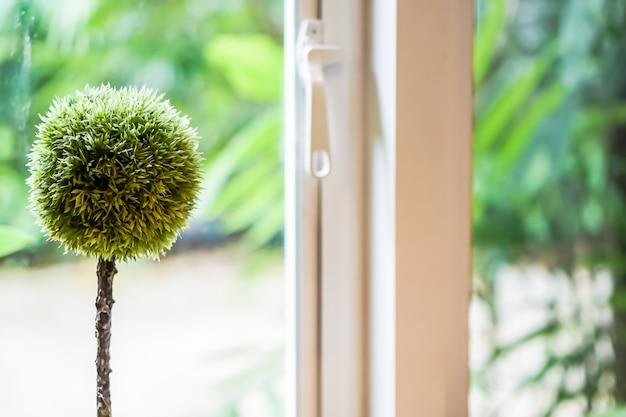 Een kleine bolvormige boom bevindt zich in de buurt van glas en een raam