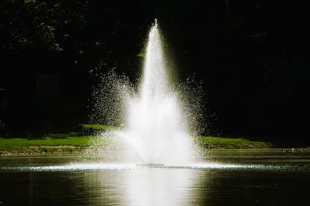 Een kleine fontein in het meer.