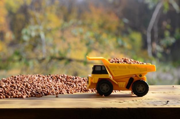 Een kleine gele stuk speelgoed vrachtwagen is geladen met bruine korrels van boekweit rond een stapel boekweit.