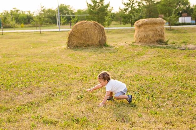 Een kleine jongen die speelt in de zomerse natuur
