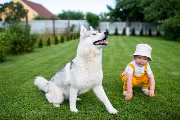 Een kleine jongen poseren met de hond in de tuin