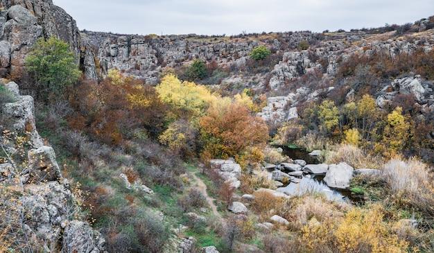 Een kleine, kleine, prachtige rivier stroomt snel tussen groene weiden en grijze rotsen