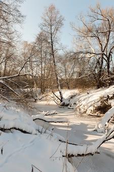 Een kleine rivier waarvan het water in de winter bevroren is, een bevroren rivier tijdens de wintervorst, sneeuw en vorst in de natuur in de winter in de buurt van een rivier of meer