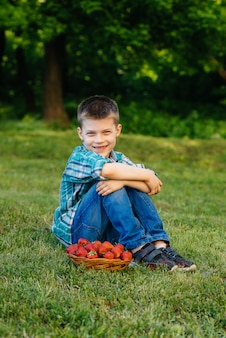 Een kleine schattige jongen zit met een grote doos rijpe en heerlijke aardbeien. oogst. rijpe aardbeien. natuurlijke en heerlijke bes.