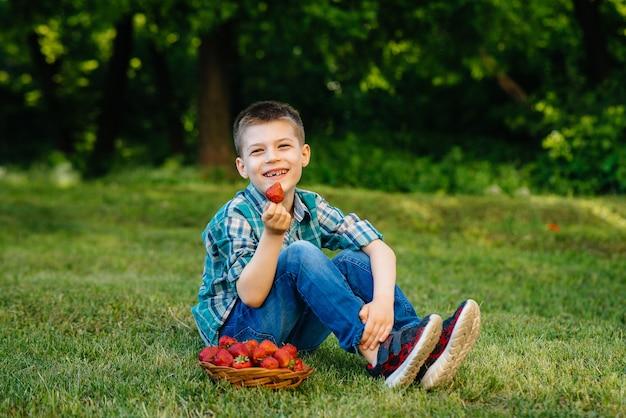 Een kleine schattige jongen zit met een grote doos rijpe en heerlijke aardbeien.