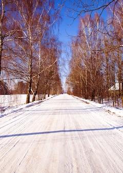 Een kleine weg in de winter, landschap