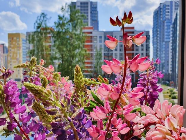 Een kleurrijk boeket wilde bloemen op de vensterbank van stadsappartement. lupine bloemen op stedelijke achtergrond. levensstijl.