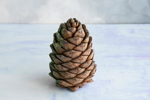 Een klomp cederhout, bedekt met noten. siberische dennenappel. bruine grote dennenappel op tafel