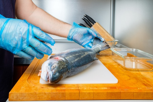 Een kok met hygiënische handschoenen houdt de slurf van een verse zalm vast