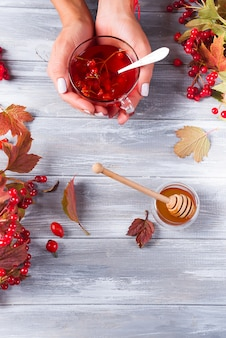 Een kopje thee met een viburnum in een vrouwelijke hand op een grijze houten achtergrond.