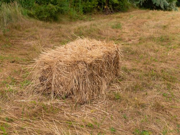 Een kubieke hooiberg vergeten in het veld. het seizoen om gras te maaien en veevoer klaar te maken voor de winter.