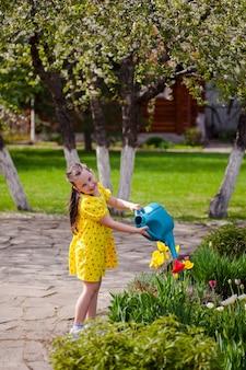 Een lachend vrolijk meisje in een gele jurk geeft gele tulpen water uit een blauwe gieter die op een...