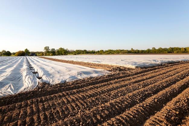 Een landbouwveld waarop materiaal als kas ligt