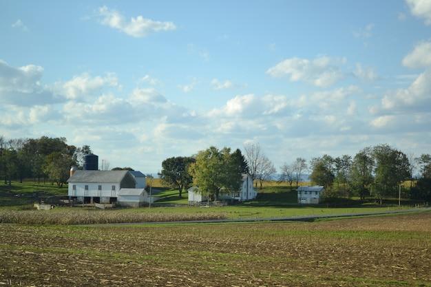 Een landschapsmening van een bijgesneden veld op een zonnige dag met enkele gebouwen