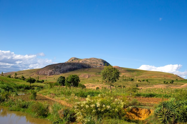 Een landschapsschot van het eiland madagaskar