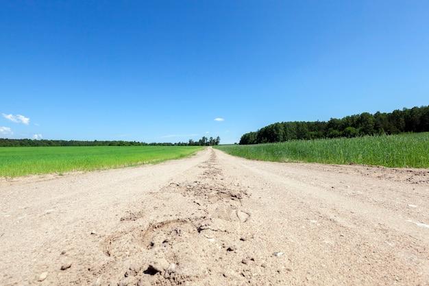 Een landweg van zand en stenen door velden en bossen