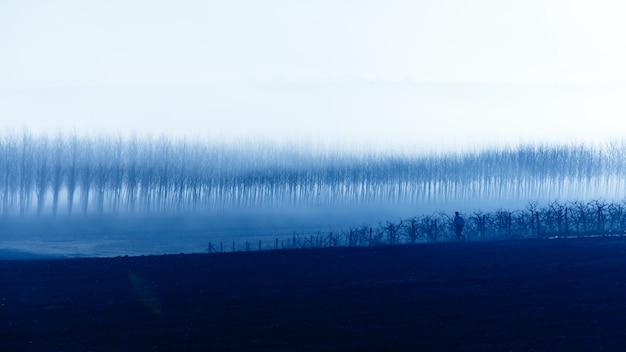 Een man die beweegt op een achtergrond van een gevoelloos bos