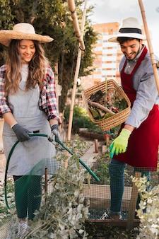 Een man die de glimlachende vrouwelijke tuinman leidt die de plant water geeft met een groene slang