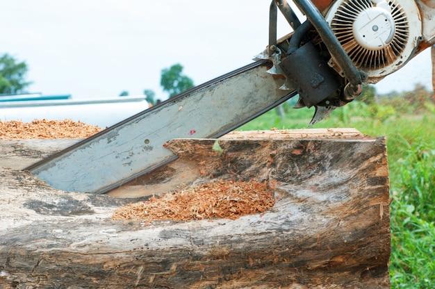 Een man die een boom met een kettingzaag snijdt