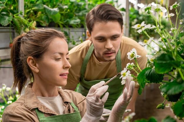 Een man en vrouw kijken naar aardbeienbloesem in verticale boerderij