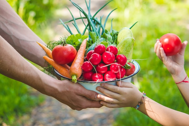 Een man en zijn kind in de tuin met groenten in hun handen