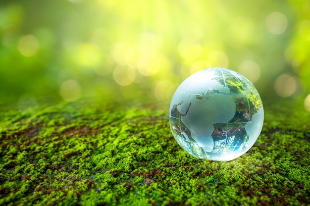 Een man met een glazen bol conceptdag aarde red de wereld red de omgeving de wereld ligt in het gras van de groene bokehachtergrond