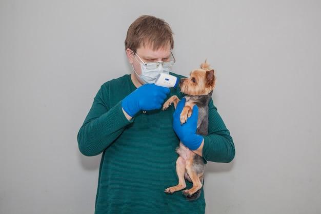 Een man met een masker en handschoenen met een thermometer meet de temperatuur van een hond